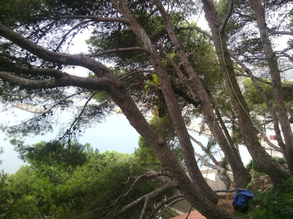 poda pino Estartit